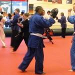 Adult  South Elgin Budokan Martial Arts Karate DSCN3099
