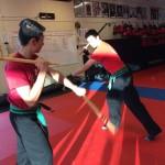 Arnis South Elgin Budokan Martial Arts Karate IMG_5818