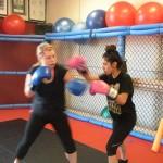 Boxing South Elgin Budokan Martial Arts Karate DSCN9612