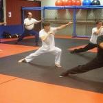 CBu South Elgin Budokan Martial Arts Shoalin Kempo  DSCN7315