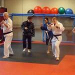 Hapkido South Elgin Budokan Martial Arts Karate  SAM_0707