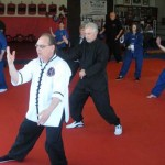 JP South Elgin Budokan Martial Arts Tai Chi Picture11