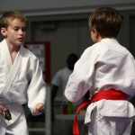 Judo South Elgin Budokan Martial Arts Karate 11870825_10205343199196322_357565515426805763_n