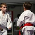 Judo South Elgin Budokan Martial Arts Karate 11870825_10205343199196322_357565515426805763_n