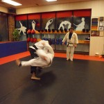 Judo South Elgin Budokan Martial Arts Karate SAM_3639
