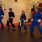 Kung Fu South Elgin Budokan Martial Arts Karate  SAM_1731