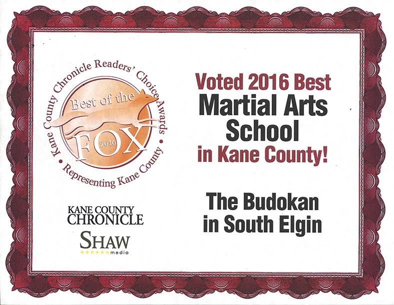 2016 Voted the THE BEST Martial Arts schools in Kane County
