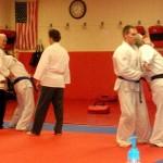 Self Defense South Elgin Budokan Martial Arts Karate DSCN1931