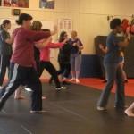 Self Defense South Elgin Budokan Martial Arts Karate Dscn7081