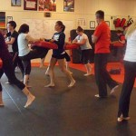 Self Defense South Elgin Budokan Martial Arts Karate  SAM_1202