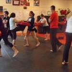 Self Defense South Elgin Budokan Martial Arts Karate  SAM_1202