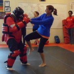 Self Defense South Elgin Budokan Martial Arts Karate SAM_1244 - Copy