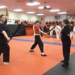 Tai Chi South Elgin Budokan Martial Arts Karate DSCN2046