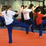 Tai Chi South Elgin Budokan Martial Arts Karate DSCN4372