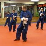 Tai Chi South Elgin Budokan Martial Arts Karate DSCN5737