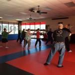 Tai Chi South Elgin Budokan Martial Arts Karate IMG_5573