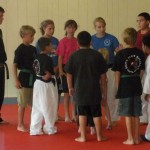 Youth Bujutsu South Elgin Budokan Martial Arts Karate Kids Karate 2