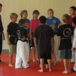 Youth Bujutsu South Elgin Budokan Martial Arts Karate Kids Karate 2