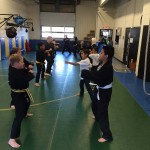 Youth Bujutsu South Elgin Budokan Martial Arts Karate Kids Karate IMG_5417