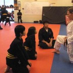 Youth Bujutsu South Elgin Budokan Martial Arts Karate Kids Karate Mark 17