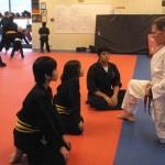 Youth Bujutsu South Elgin Budokan Martial Arts Karate Kids Karate Mark 17