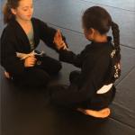 Youth Bujutsu South Elgin Budokan Martial Arts Karate Kids ePicture26
