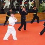 Youth South Elgin Budokan Martial Arts Karate DSCN2361