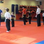 Youth South Elgin Budokan Martial Arts Karate DSCN3743