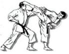 programs_karate