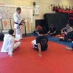 RK South Elgin Budokan Kendo IMG_5426