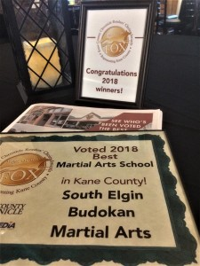 South Elgin Budokan Reader's Choice Award 2018 for Best martial Arts Studio