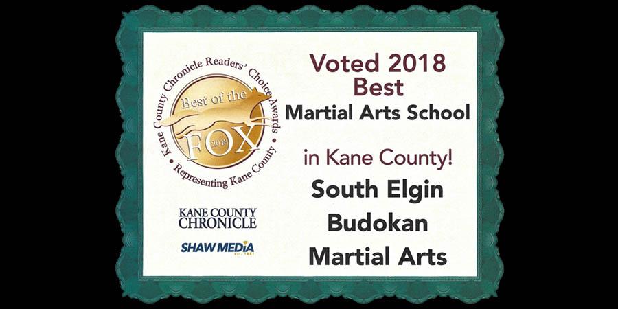 south elgin budokan voted best martial arts studio kane county