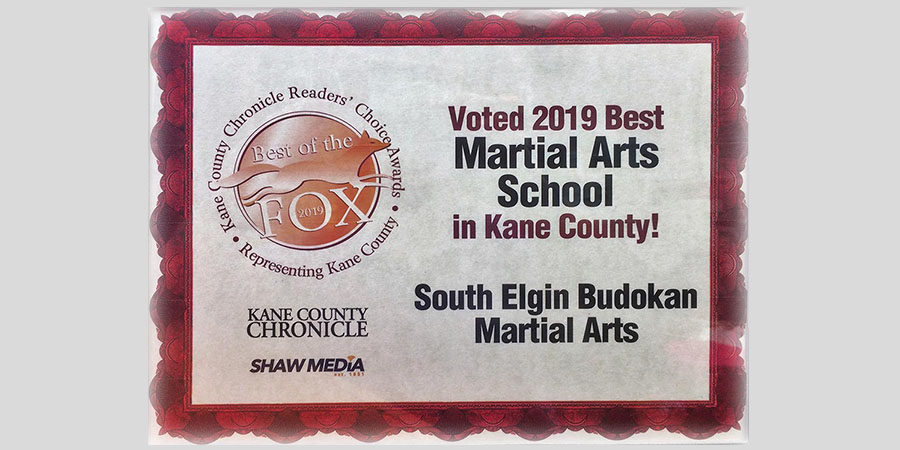 south-elgin-budokan-voted-best-martial-arts-studio-kane-county 2019