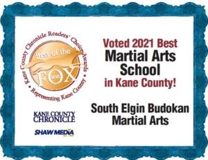 Reader's Choice 2021 South Elgin Budokan Martial Arts Karate Kids